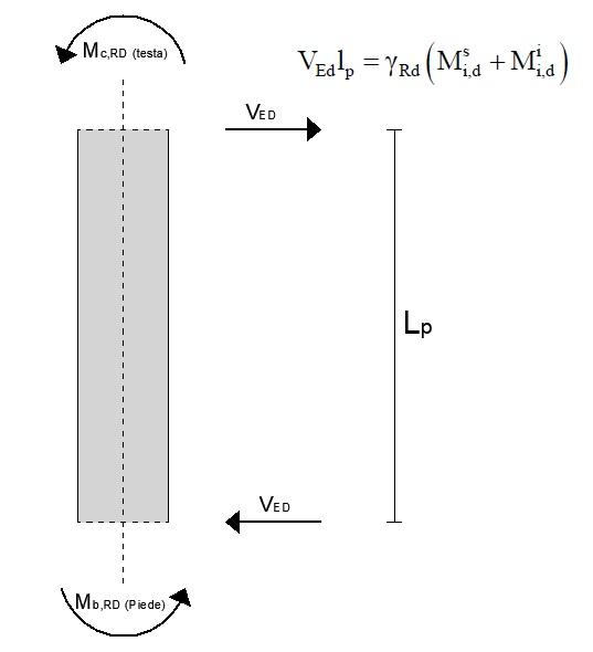 Calcolo del taglio sollecitante (capacity design)